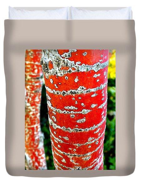 Red Bark Birch Duvet Cover