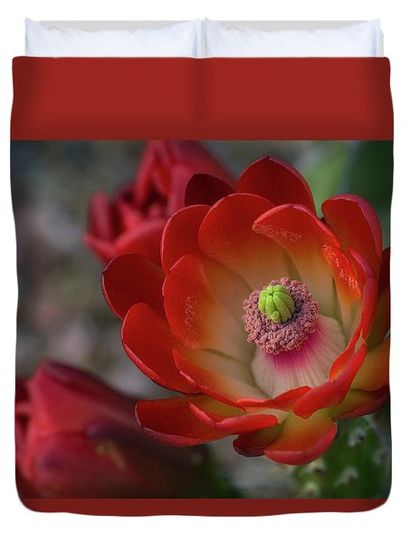Duvet Cover featuring the photograph Red Beauty  by Saija Lehtonen