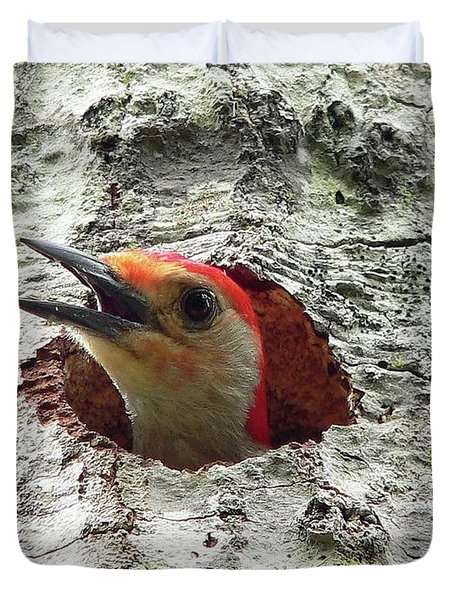 Red-bellied Woodpecker 02 Duvet Cover by Al Powell Photography USA