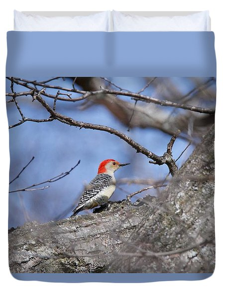Duvet Cover featuring the photograph Red-bellied Woodpecker 1134 by Michael Peychich