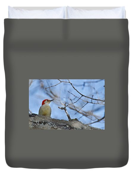 Duvet Cover featuring the photograph Red-bellied Woodpecker 1137 by Michael Peychich