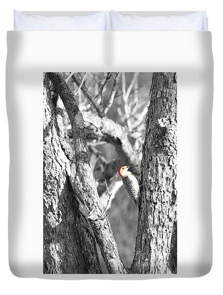 Duvet Cover featuring the photograph Red-bellied Woodpecker by Benanne Stiens