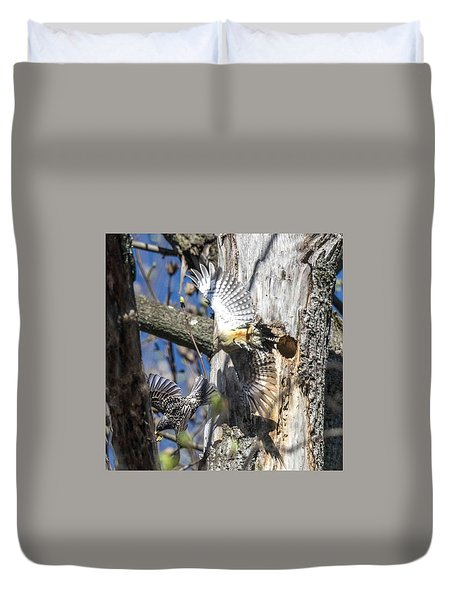 Red Bellied Woodpecker Chasing An Attacking Starling Duvet Cover