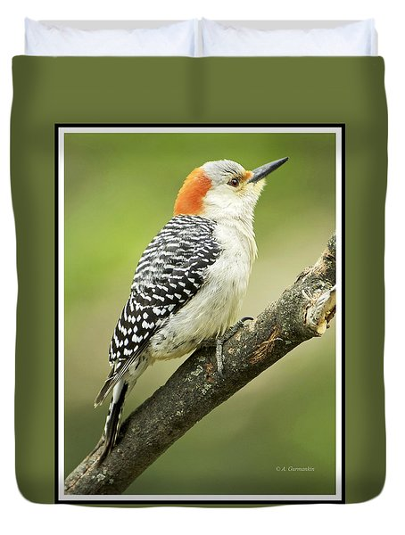 Red Bellied Woodpecker, Female On Tree Branch Duvet Cover