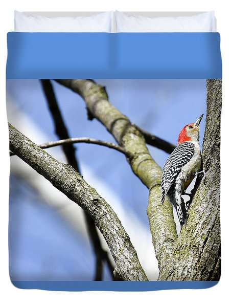 Duvet Cover featuring the photograph Red-bellied Woodpecker by Gary Wightman