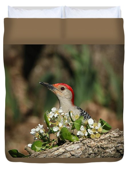 Red-bellied Woodpecker In Spring Duvet Cover by Sheila Brown