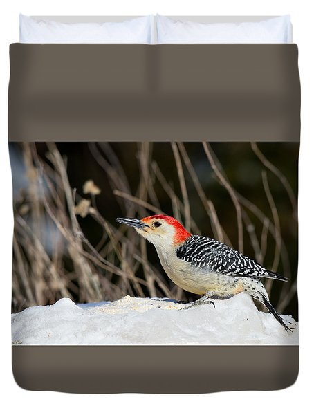 Duvet Cover featuring the photograph Red-bellied Woodpecker In The Snow by Angel Cher