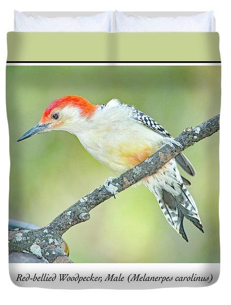 Red Bellied Woodpecker, Male Duvet Cover by A Gurmankin
