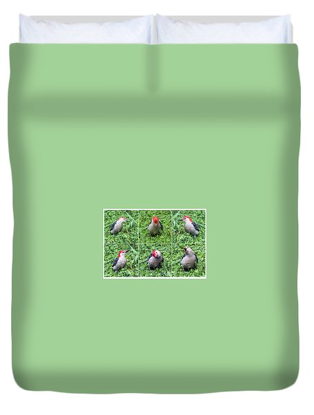 Red-bellied Woodpecker Posing In The Grass Duvet Cover