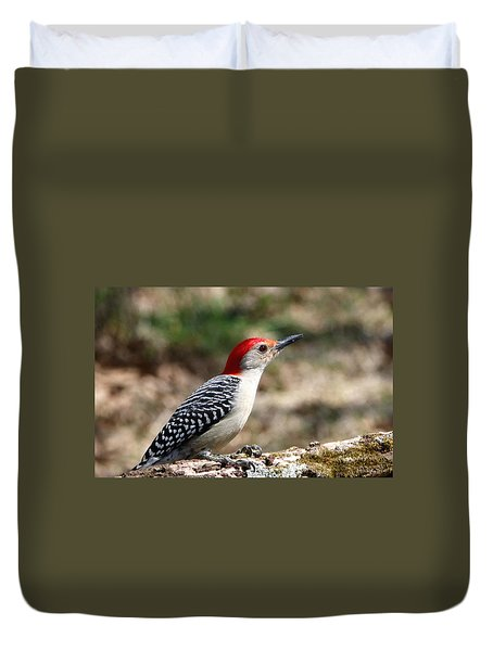 Red-bellied Woodpecker Duvet Cover by Sheila Brown