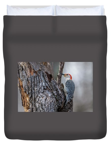 Duvet Cover featuring the photograph Red Bellied Woody by Paul Freidlund