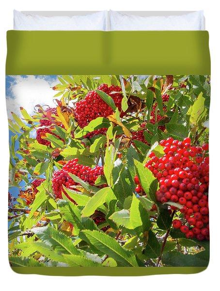Red Berries, Blue Skies Duvet Cover