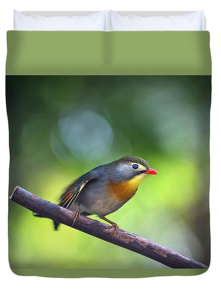 Red Billed Leiothrix Duvet Cover