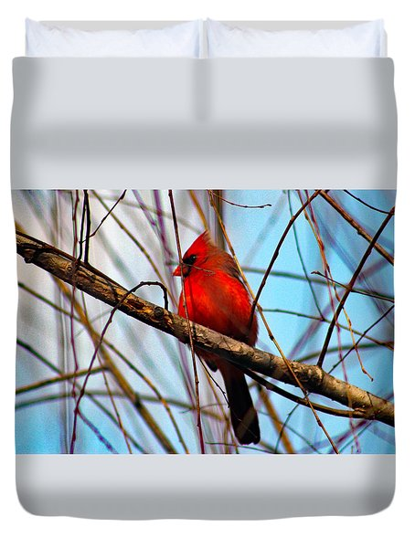 Red Bird Sitting Patiently Duvet Cover