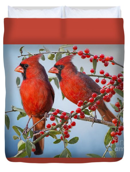 Red Birds In Red Berries Duvet Cover by Bonnie Barry