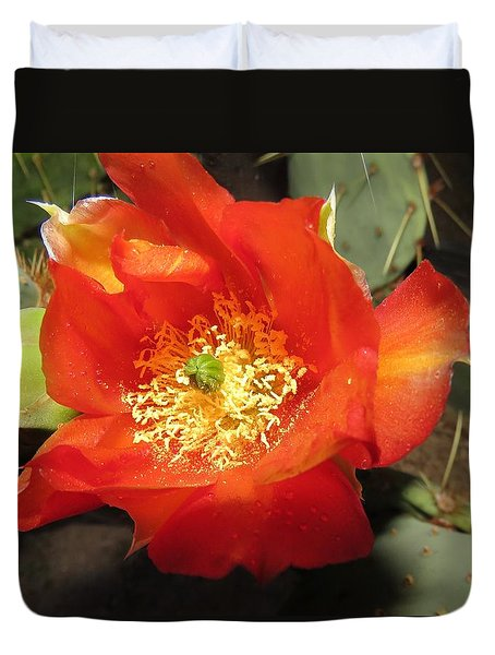 Red Bloom 1 - Prickly Pear Cactus Duvet Cover