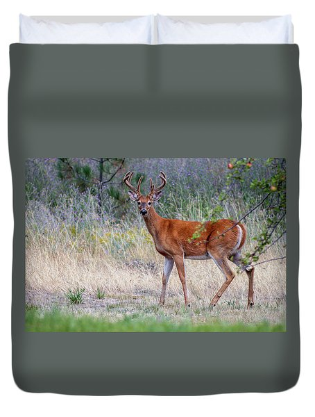 Red Bucks 1 Duvet Cover