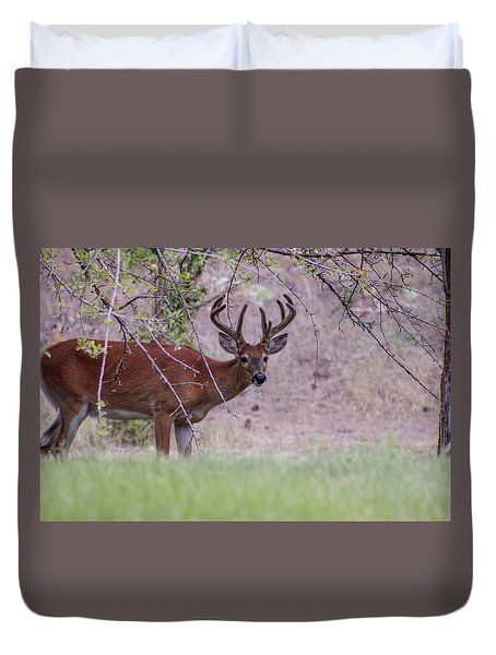 Duvet Cover featuring the photograph Red Bucks 2 by Antonio Romero