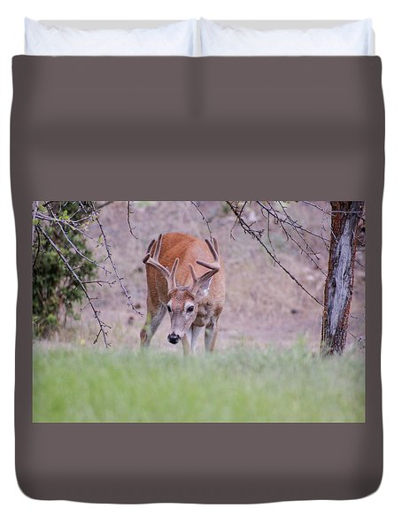 Red Bucks 6 Duvet Cover