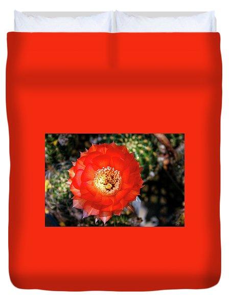 Red Cactus Bloom Duvet Cover