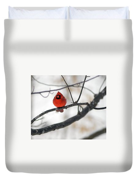 Duvet Cover featuring the photograph Red Cardinal In Snow by Marie Hicks