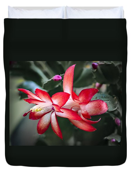 Red Christmas Cactus Duvet Cover