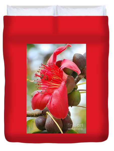 Red Cotton Tree Duvet Cover