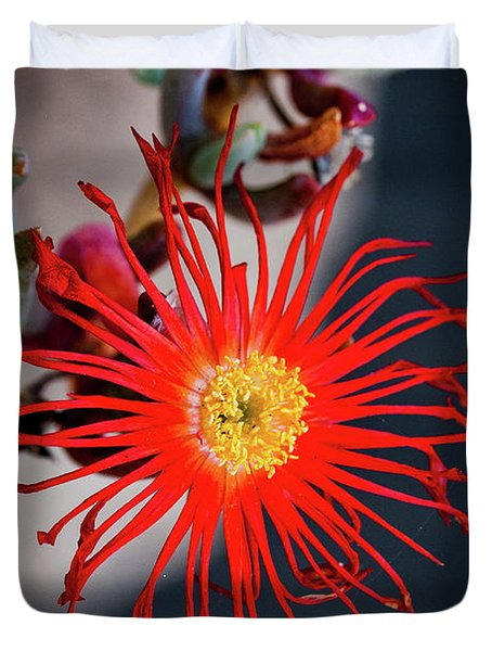 Red Crab Flower Duvet Cover