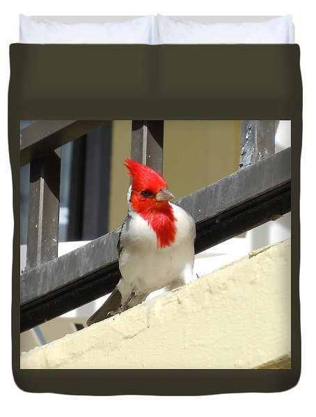 Red-crested Cardinal Posing On The Balcony Duvet Cover