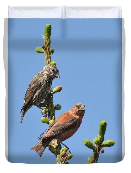Red Crossbill Pair Duvet Cover