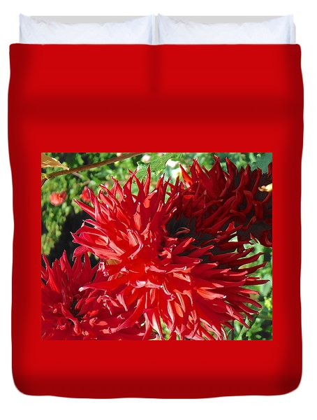 Red Dahlia Pizazz  Duvet Cover
