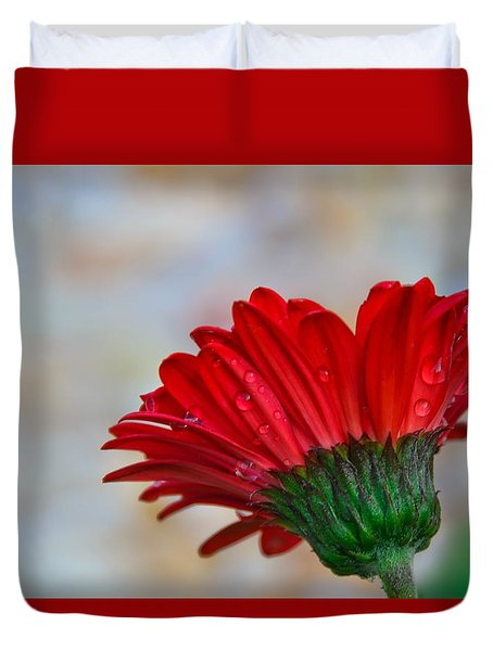 Red Daisy  Duvet Cover by John Harding