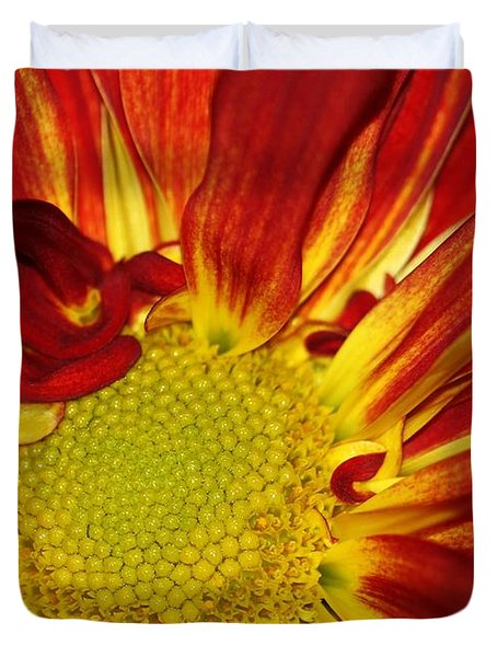 Red Daisy Duvet Cover by Sabrina L Ryan