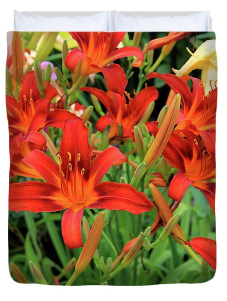 Red Daylilies Duvet Cover