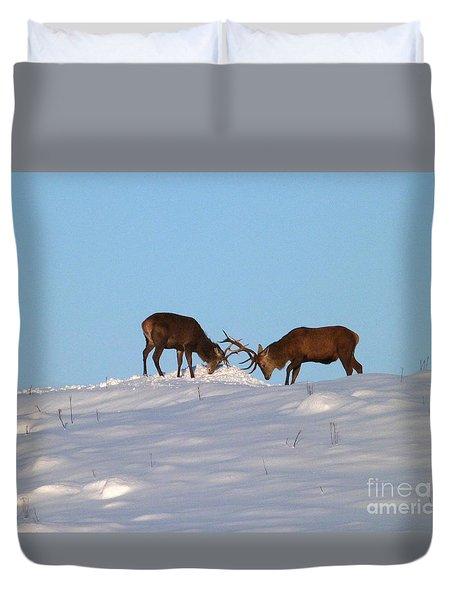 Red Deer Stags - Winter Sparring Duvet Cover