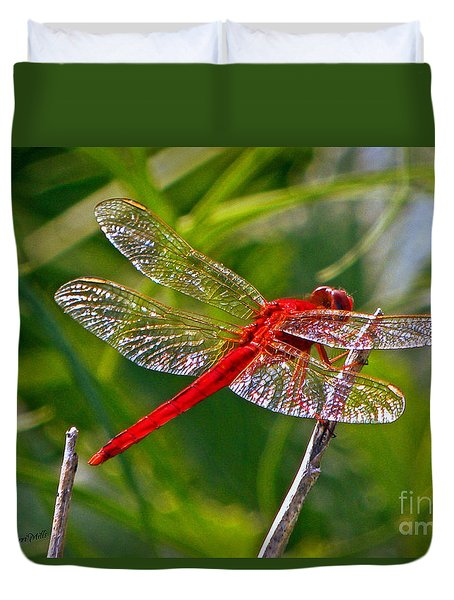 Duvet Cover featuring the photograph Red Dragonfly by Terri Mills