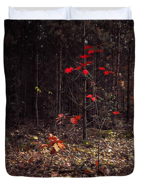 Red Drops Duvet Cover by Dmytro Korol