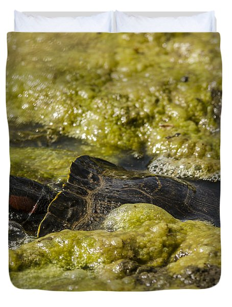 Duvet Cover featuring the photograph Red-eared Slider by JT Lewis