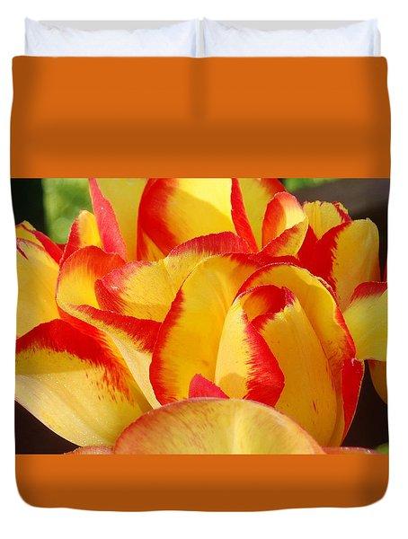 Red-edged Tulips Duvet Cover