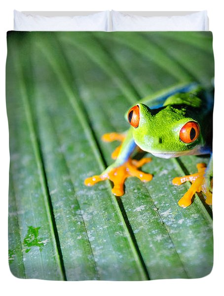 Red Eyed Frog Close Up Duvet Cover by Matteo Colombo