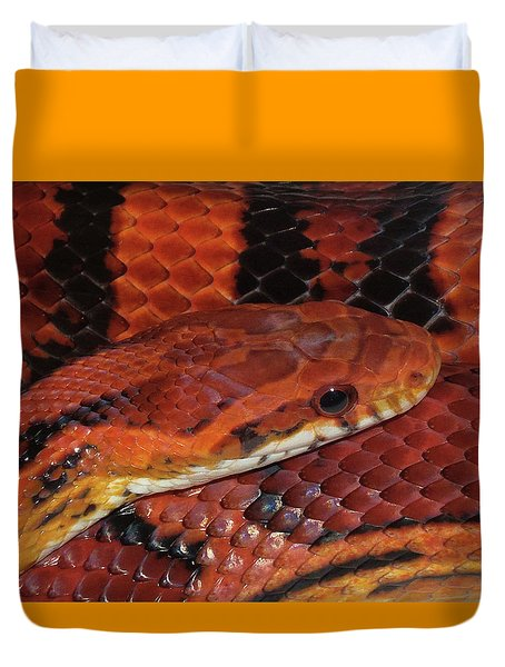 Red Eyed Snake Duvet Cover by Patricia McNaught Foster