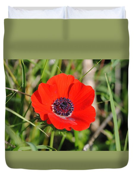 Red Anemone Coronaria 4 Duvet Cover