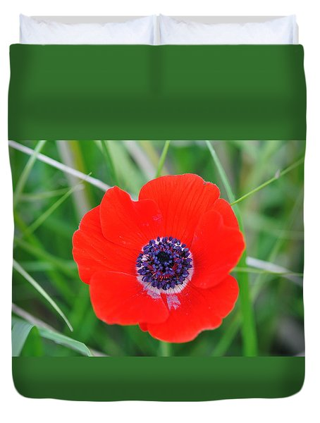Red Anemone Coronaria 3 Duvet Cover