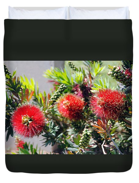 Callistemon - Bottle Brush 6 Duvet Cover