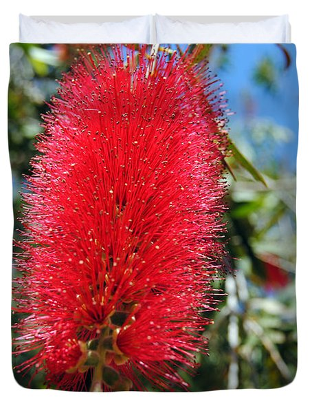Callistemon - Bottle Brush 2 Duvet Cover