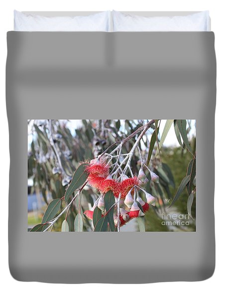 Red Flowering Gum Duvet Cover