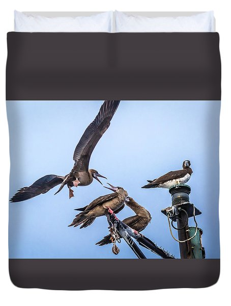 Red Footed Booby Argument 4 Duvet Cover