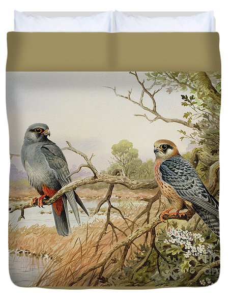 Red-footed Falcons Duvet Cover by Carl Donner