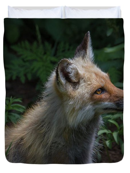 Red Fox In The Forest Duvet Cover