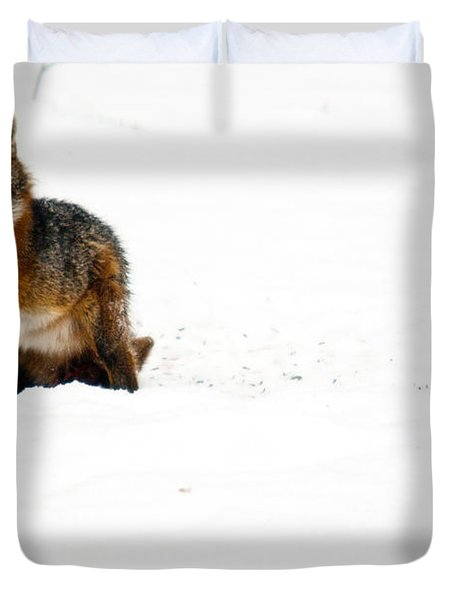 Red Fox In The Snow Duvet Cover